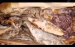 Производство копченной рыбы