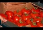 Фрукты и овощи из-за рубежа